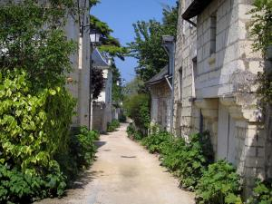 Candes-Saint-Martin - Narrow street lined with plants and with stone houses