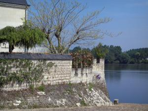 Candes-Saint-Martin - Bank and the Loire River