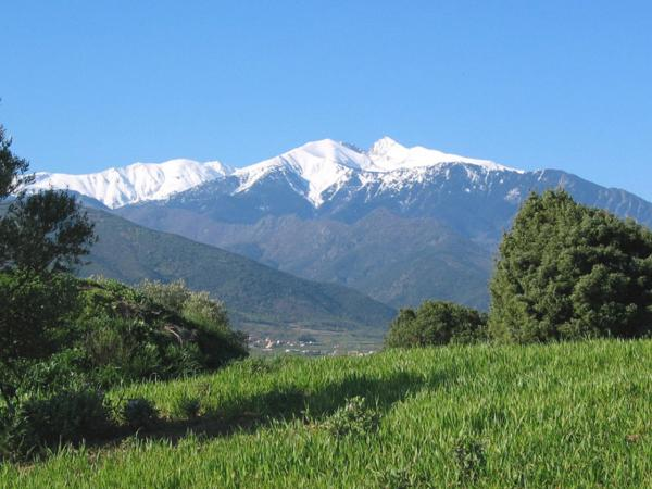 The Canigou - Tourism, holidays & weekends guide in the Pyrénées-Orientales