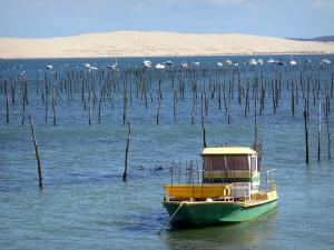 Le Cap-Ferret - Arcachon bay: oyster farmer boat overlooking the Pilat dune