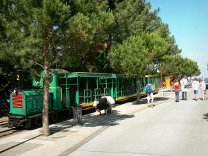 Le Cap-Ferret - Streetcar of Cap-Ferret (trolley)