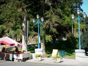 Capvern-les-Bains - Spa town: stand market, blue lights and trees