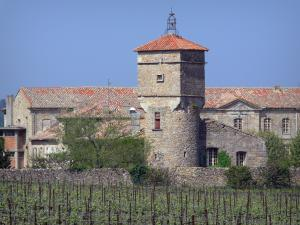Cassan abbay-castle - Abbaye-castle (former royal priory) and vineyards in Roujan