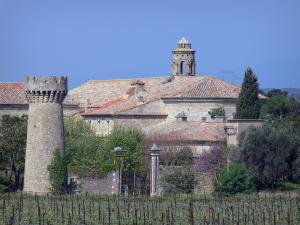 Cassan abbay-castle - Abbaye-castle (former royal priory), church bell tower, trees and vineyards, in Roujan