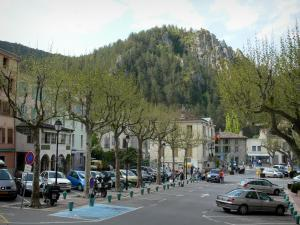 Castellane - Trees and houses of the old town