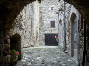 Castelnau-Pégayrols - Archway, paved street and stone houses of the medieval village