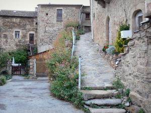 Castelnau-Pégayrols - Stroll through the medieval village