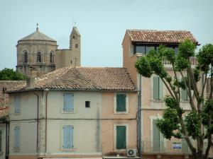 Cavaillon - Tree, houses and Saint-Véran cathedral