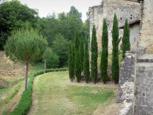 Cazeneuve castle - Cypress at the foot of the castle
