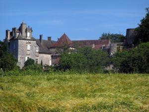 Cénevières castle - Wheat field in foreground, castle and trees, in the Lot valley, in the Quercy