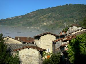 Cerdon - Vineyards overlooking the houses of the village; in Upper Bugey