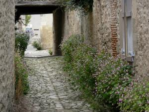 Charroux - Paved street and flower