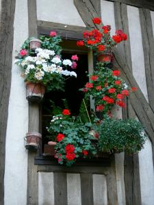 Chartres - Flower-bedecked window and timber framings of a house in the old town
