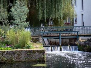 Chartres - Eure river, weeping willow (tree) and bridge