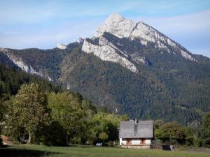 Chartreuse Regional Nature Park - Chartreuse mountains: house, lawn, trees, forest and mountain