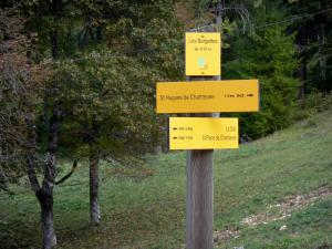 Chartreuse Regional Nature Park - Chartreuse mountains: Hiking signs, trees in background