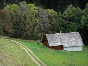 Chartreuse Regional Nature Park - Chartreuse mountains: chalet, meadow and trees