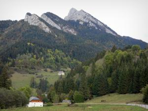 Chartreuse Regional Nature Park - Chartreuse mountains: road bordered by meadows, houses, trees, forest and mountain