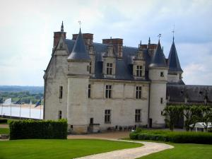 Château d'Amboise - Royal castle, path lined with lawns and flags