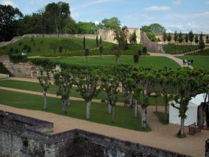Château d'Amboise - Gardens of the royal castle