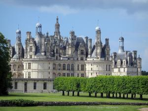 Château de Chambord - Renaissance Château, lines of cut trees, and lawns