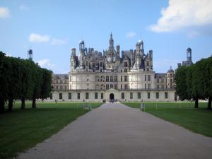 Château de Chambord - Alley lined with trees and lawns leading to the Renaissance Château