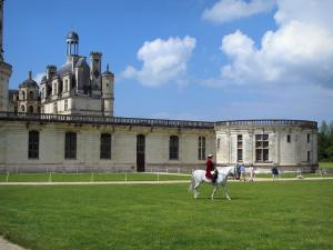 Château de Chambord - Renaissance Château, dressed up rider on a white horse, lawns, and clouds in the blue sky