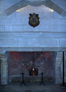 Château de Chenonceau - Kitchens of the castle: fireplace