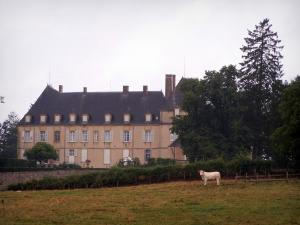 Château de Drée - Facade of the Château, trees, cow in a meadow; in Curbigny