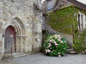 Château-Guillaume - Church, hydrangea and house of the village; in the town of Lignac, in the Allemette valley, in La Brenne Regional Nature Park