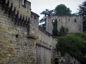 Château de Langeais - Ramparts of the fortress and the remains (ruins) of the keep