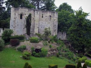 Château de Langeais - Remains (ruins) of the keep, shrubs and trees