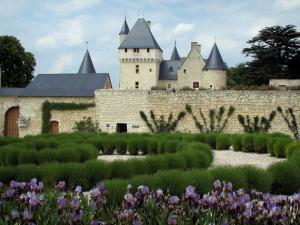 Château du Rivau - Fortress, trees, lavender and iris flowers