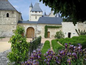 Château du Rivau - Fortress and its outbuildings, lavender and iris flowers