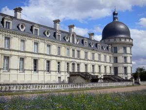 Château de Valençay - Facade of Classical style and corner tower of the château, alley and patchwork of meadow flowers (park)