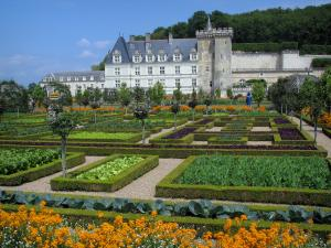 Château de Villandry and gardens - Castle and its keep dominating the vegetable garden (vegetables and flowers)