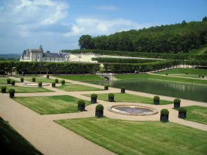 Château de Villandry and gardens - Water garden, castle and trees