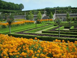 Château de Villandry and gardens - Flowers, vegetables and fruit trees of the vegetable garden