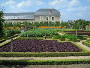 Château de Villandry and gardens - Vegetable garden (vegetables)