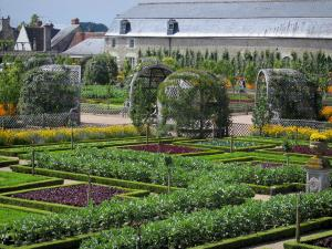 Château de Villandry and gardens - Vegetable garden (vegetables and flowers) with its arbours