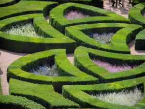 Château de Villandry and gardens - Ornament garden (Amour gardens)