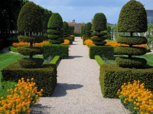 Château de Villandry and gardens - Flowers and cut shrubs of the simples garden