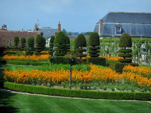 Château de Villandry and gardens - Aromatic plants, flowers and cut shrubs of the simple garden