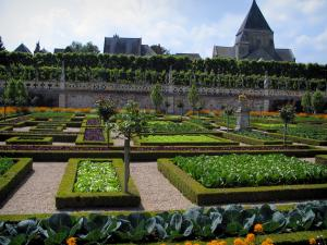 Château de Villandry and gardens - Flowers and vegetables of the vegetable garden with view of the church and the houses of the village