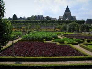 Château de Villandry and gardens - Vegetables of the vegetable garden with view of the church and the houses of the village