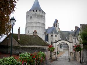 Châteaudun - Castle with its keep (tower), its Sainte-Chapelle and its main courtyard, lamppost and flowers; in the Loir valley