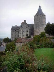 Châteaudun - Castle and its keep (tower), roofs of houses, lawn and vegetation