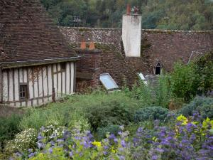Châteaudun - Flowers, shrubs and roofs of houses of the old town