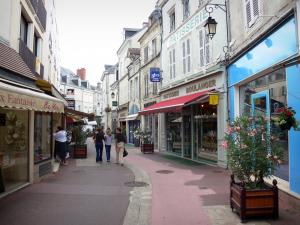 Châteauroux - Shopping street lined with houses and shops
