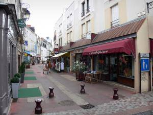 Châteauroux - Rue Grande street (shopping street) with its houses and shops